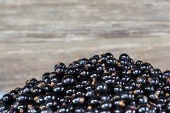 Stapel von schwarzen Johannisbeeren auf dem grauen Hintergrund Stockfoto