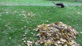 Stapel von trockenen Blättern und von leerem Schubkarrewagen auf Herbstgartenrasen 4K stock footage
