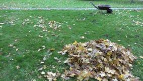 Stapel von trockenen bunten Blättern und leerer Karrenwarenkorb auf Herbst parken Gras 4K stock video footage