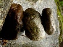 Stapel Zensteine auf Felsen am magischen Platz im Wald lizenzfreie stockfotos
