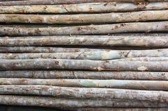 Stapeleukalyptushintergrund Lizenzfreie Stockbilder
