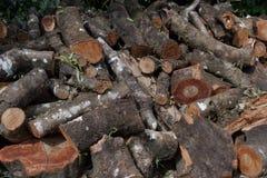 Stapelhout het snijden Stock Afbeelding