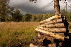 Stapeln des Holzes Stockbilder