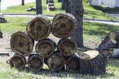Stapels gesneden boomlogboeken voor vrij brandhout stock foto's