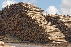 Stapels logboeken Stock Fotografie