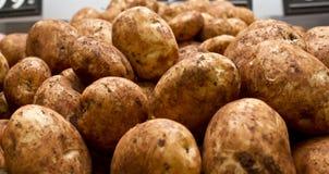 Stapels van aardappels Stock Fotografie
