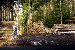 Stapels van brandhout in de zaagmolen royalty-vrije stock afbeeldingen