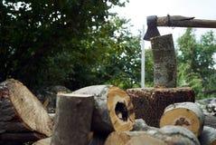 Stapels van brandhout in het bos, close-up royalty-vrije stock afbeeldingen