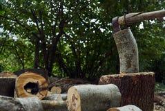 Stapels van brandhout in het bos, close-up royalty-vrije stock fotografie