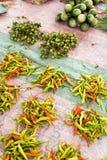 Stapels van chilis op verkoop Royalty-vrije Stock Foto