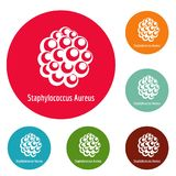 Staphylococcus aureus icons circle set vector. Isolated on white background Royalty Free Stock Photography