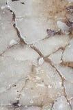 stapianie lodowa tekstura Obrazy Royalty Free
