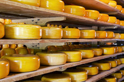 Staplad ost arkivbild