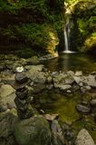 Staplad stenar och blomma framme av en vattenfall i Carpathian berg som flödar av en gully som snidas i sten och täckas av mossa arkivbild