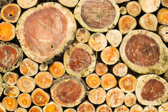 Staplad träsnittbakgrund Arkivbild