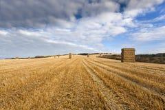 Staplade baler av sugrör i bondefält, Yorksire Wolds Royaltyfri Foto