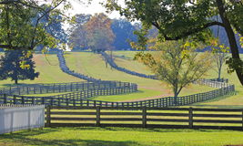 Staplade Delad-Stång staket i Appomattox, Virginia arkivbild