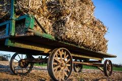 Staplade höbaler på den antika amish vagnen Fotografering för Bildbyråer