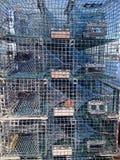 Staplade hummerblockeringar Royaltyfri Fotografi