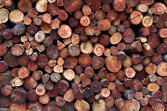 Staplade journaler av trä Arkivfoton