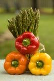 staplade spansk peppar Royaltyfri Foto