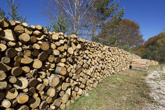 Staplar av trä Arkivbilder