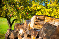 Staple of fire wood in the sun Royalty Free Stock Images