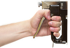 Staple gun. Professional staple gun in the hand isolated over white background Stock Photo