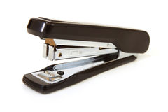 Free Stapler Royalty Free Stock Photography - 14939967
