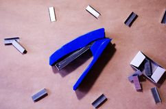 Stapler. Stapler blue. Stapler and staples. Stapler is on the table. Office. Office stapler. Stapler. Stapler blue. Stapler and staples. Stapler is on the table stock images