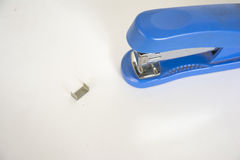 Stapler and stapler. Stapler with white color blue staples in detail with creativity Stock Photography