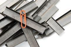 Stapler wire Stock Image