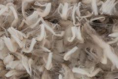 Staples di lana merino Fotografia Stock Libera da Diritti