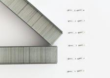 Staples en un papel sujetado con grapa Imágenes de archivo libres de regalías