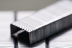 Staples-Nahaufnahmeschuß Lizenzfreie Stockfotos