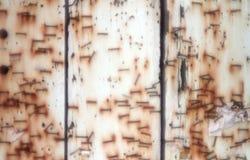 Staples på wood bakgrund Arkivfoton
