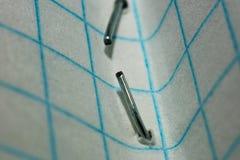 Staplowa skowa w papierowym prześcieradle w klatce makro- obraz royalty free