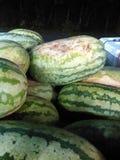Staplungswassermelonen Lizenzfreie Stockfotos