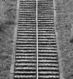 stappen Stock Foto's