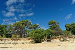 Stappen aan het strand, Weinig Kaiteriteri, Nieuw Zeeland stock afbeeldingen