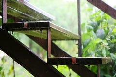 Stappen in de regen stock afbeelding