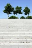 Stappen en bomen in Sevilla, Spanje Royalty-vrije Stock Foto