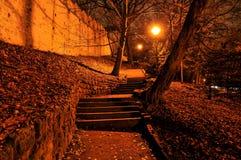 Stappen en muur in nacht Stock Fotografie