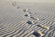 Stappen in het zand stock foto