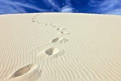 Stappen in het zand van het Duin du Pyla, Frankrijk Stock Foto's