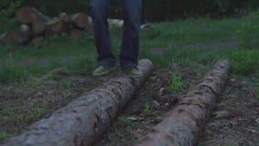 Stappen op een het liggen boom stock videobeelden
