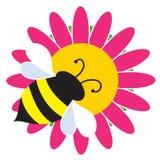 Stappla biet på blomma Royaltyfria Foton