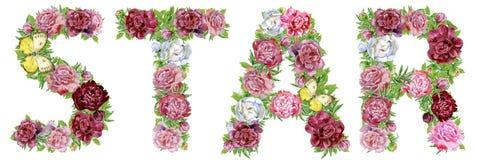 STAR λέξης των λουλουδιών watercolor Στοκ εικόνα με δικαίωμα ελεύθερης χρήσης