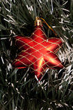 Star. Red christmas star  on spruce background Royalty Free Stock Photos