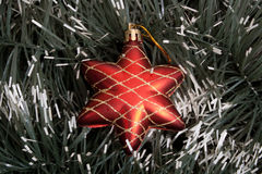 Star. Red christmas star on spruce background Royalty Free Stock Images